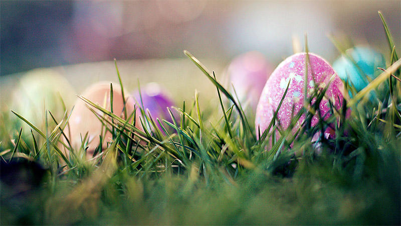 These colorful Easter eggs look like anybody can see them! But they are hidden very well, so we are not sure if they are going to be discovered.